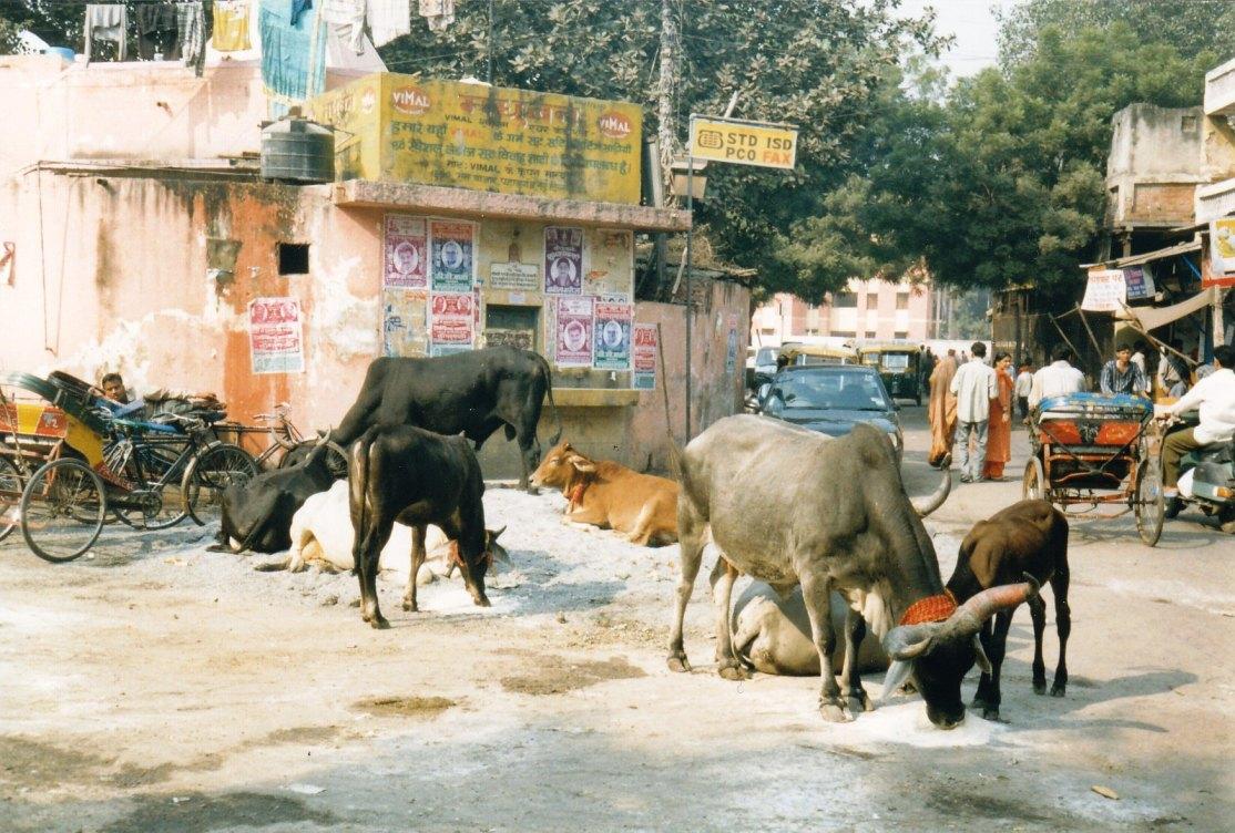 Main Bazar in Delhi © Wolfgang Stoephasius