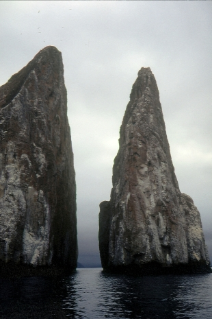 Galapagos91 (2)